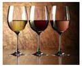 řízená degustace vín